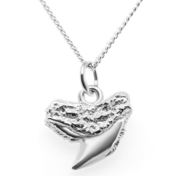 Silver Shark Tooth Necklace Tiger Shark Tooth by World Treasure Designs